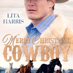 Merry Christmas Cowboy